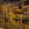 پاییز هزار رنگ طالقان