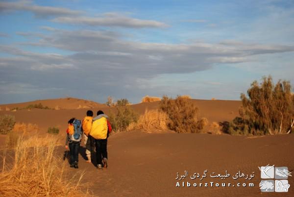 Desert trekking - Mesr to Arousan