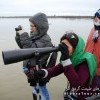 Birdwatching in wetland