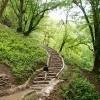 مسیر جنگلی قلعه رودخان