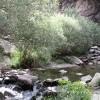 دره شموشک