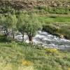 رودخانه وارنگه رود