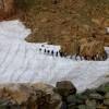عبور از روی برف در تابستان - سیالان