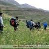 کوهنوردان در مسیر قله پاشوره