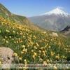 نمایی از قله دماوند (مسیر قله پاشوره)