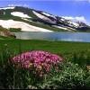 دریاچه دالانپر